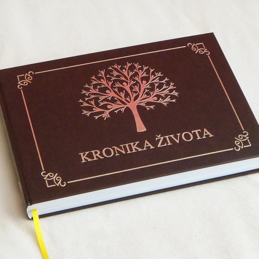 kronika-rodostrom